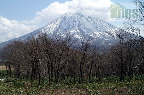 Magnificent Views of Mt Yotei